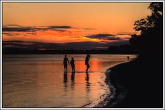 Palma Sola Sunset