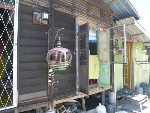 ML-Kuala Perlis (50)
