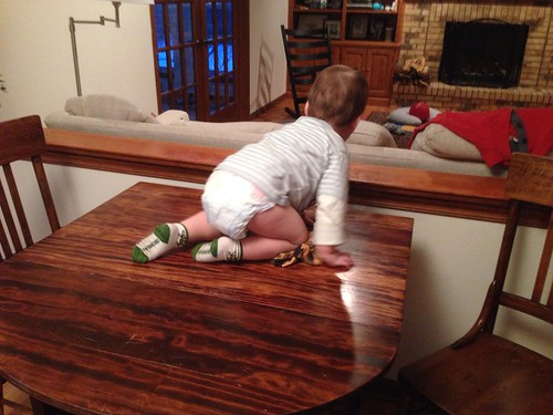 Elliott Climbing onto Kitchen Table