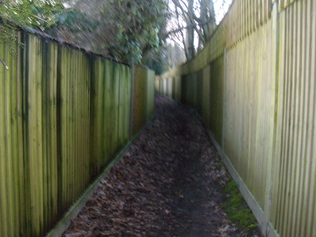 Fences Garden fences contained us for most of the last 750 metres. Riddlesdown to Kingswood