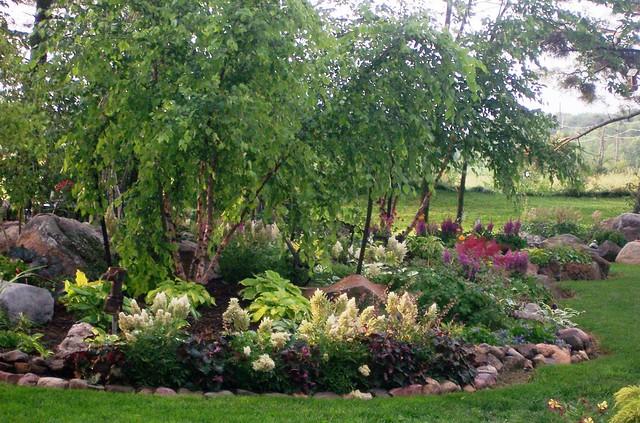 My Dream Shade Garden A Gallery On Flickr