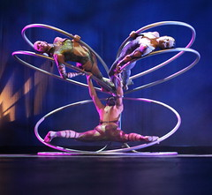 rings(0.0), rhythmic gymnastics(0.0), performing arts(1.0), aerialist(1.0), entertainment(1.0), performance(1.0), acrobatics(1.0), performance art(1.0),