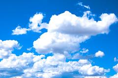 nubes de algodon_2