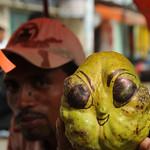Alien Fruit - Rivas, Nicaragua