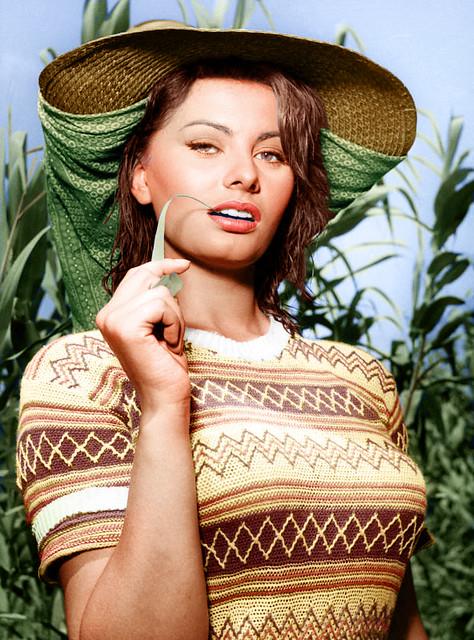 Header of Sophia Loren