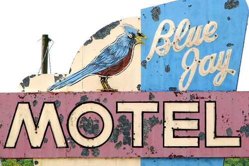 Blue Jay Motel neon sign detail