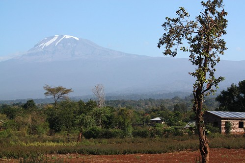 A view of Mount Kilimanjaro