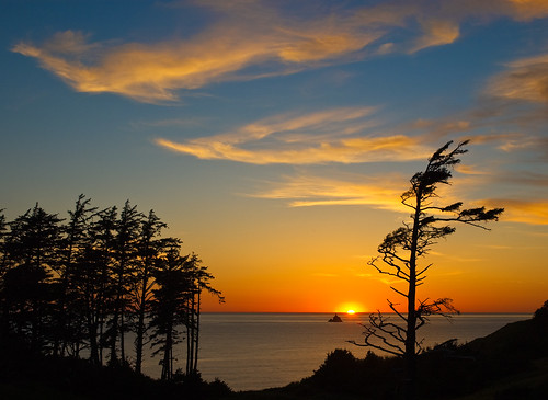 ocean trees light sunset jeff clouds oregon landscape coast bravo pacific silhouettes sway anawesomeshot absolutelystunningscapes jlmphoto vosplusbellesphotos milsteen