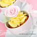 Rose Cuppies by Eva Blixman