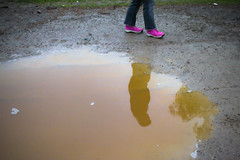 puddle, yellow, water,