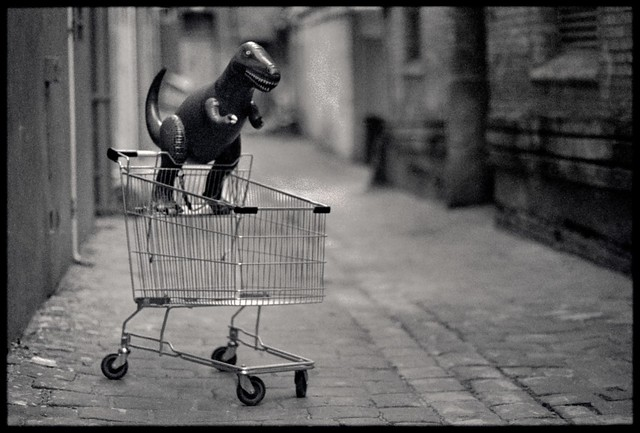 Dinosaur in shopping cart