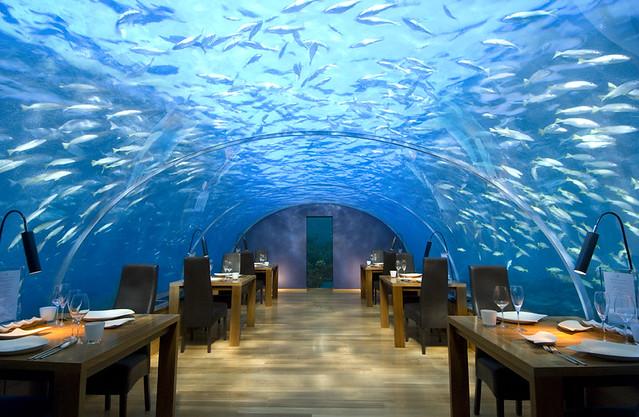 Подводный ресторан Ithaa на Мальдивах