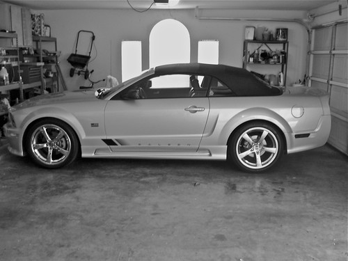 saleen side stickers question the saleen forums at. Black Bedroom Furniture Sets. Home Design Ideas