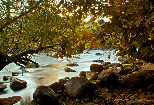 california autumn trees usa nature water river landscape nikon rocks tistheseason d300 kernriver anawesomeshot absolutelystunningscapes pioneerwomanaction dragondaggerphoto dragondaggeraward sailsevenseas trolledproud newgoldenseal
