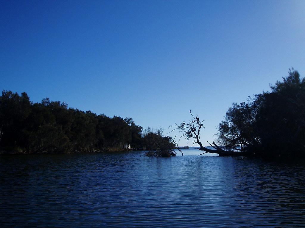 Cooleenup Island Western Australia Around Guides