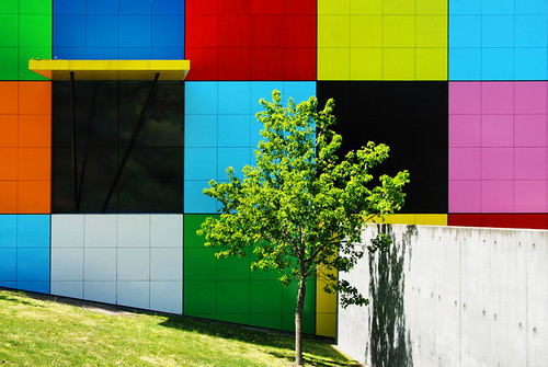 Coloured Squares and Green Tree