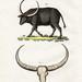 bertuch bison 2