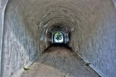 Tunnel #2