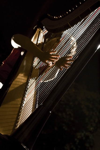 Photo:Light strings By Marco Fedele