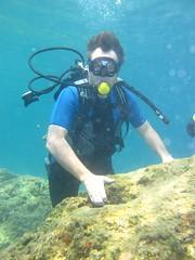 Brian Scuba Diving