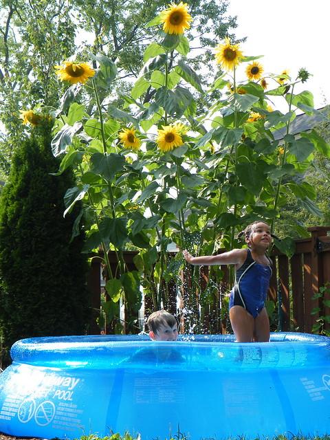 Schwimmbad im eigenen garten m glichkeiten in jeder for Aufblasbarer gartenpool