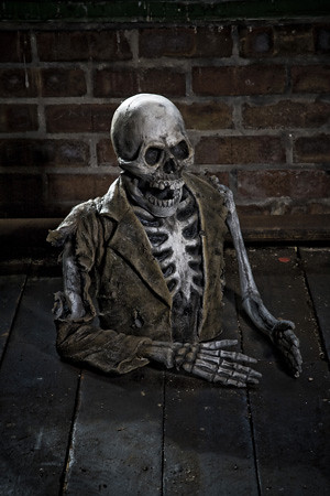 Flickr photo sharing - Scary skeleton games ...