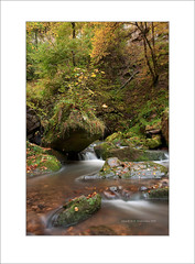 Mullerthal in Autumn