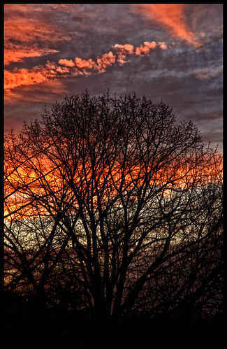 red sky black tree nature nikon pennsylvania d200 természet hdr ég fa piros montgomerycounty fekete nikond200 worldwidelandscapes absolutelystunningscapes