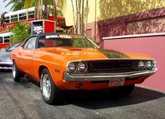 automobile(1.0), automotive exterior(1.0), vehicle(1.0), dodge challenger(1.0), classic car(1.0), land vehicle(1.0), muscle car(1.0), sports car(1.0),
