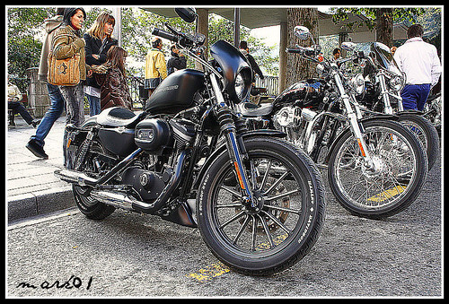Harley Davidson 20