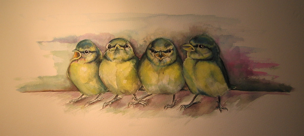 Baby birds in watercolours