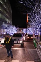 Roppongi at Christmas