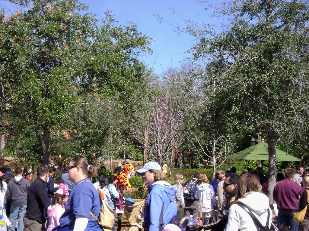 Pooh S Playful Spot Fantasyland Magic Kingdom Wdw 09 Www