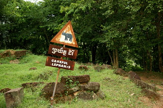 Image of Phnom Bakheng near Siem Reap. elephant warning geotagged asian photo highresolution cambodia kambodscha flickr cambodian foto khmer pyramid image beware sommer picture free august cc elephants jpg rap bild siemreap angkor jpeg elefant geo 2009 phnom stockphoto elefanten warnschild bakheng bakeng pnom siemreab siemrap kâmpŭchea preăh réachéanachâkr kâmpŭchéa pyramidentempel