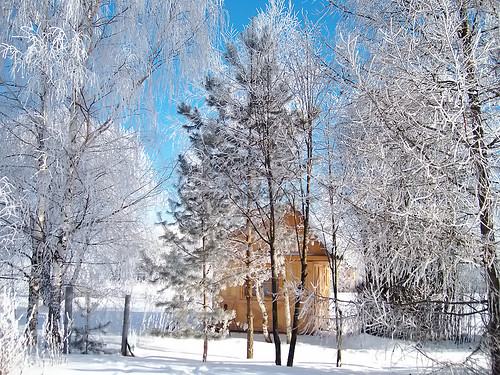 winter house snow forest landscape scenery view russia russie risi nga rusland rusia ロシア russland ryssland 俄羅斯 ruska krievija izba venäjä rússia rusio rusko rusija रुस ruscia רוסיה villsge oroszország روسيا flickrestrellas russianremote روسیه רוסלאנד ρωσία ռուսաստան russja ܪܘܣܝܐ arusia rrusia রাশিয়া ruskô rūsia ngòlòsṳ̂ anruis ynroosh rûsya റഷ്യ रशिया ruxitlān ruslaand россе ਰੂਸ rusiye rūtia rusyjo రష్యా ரஷ்யா rusän rosėjė mygearandme