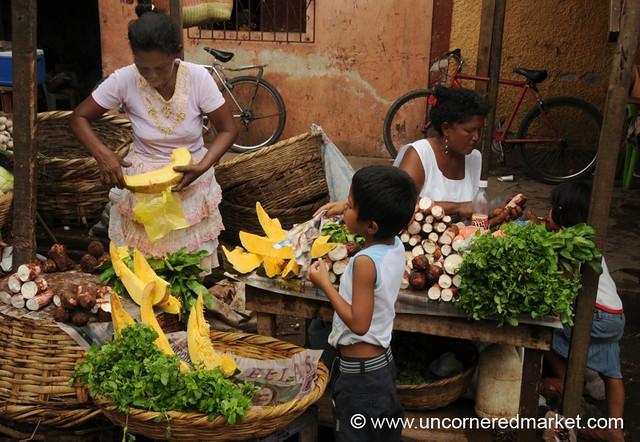 Pumpkin, Yucca and Mint - Granada, Nicaragua