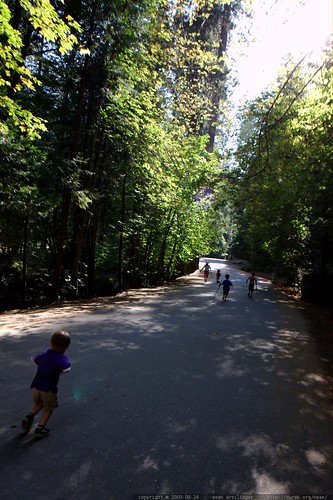 lots of kids hiking home from mirror lake   IMG 4179