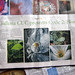 Cycle 2: Flora review .... by Gaurav Dhwaj Khadka