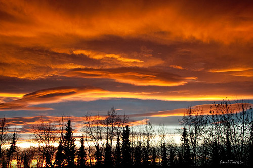 morning alaska sunrise tgif fairbanks akfirebug falcetta