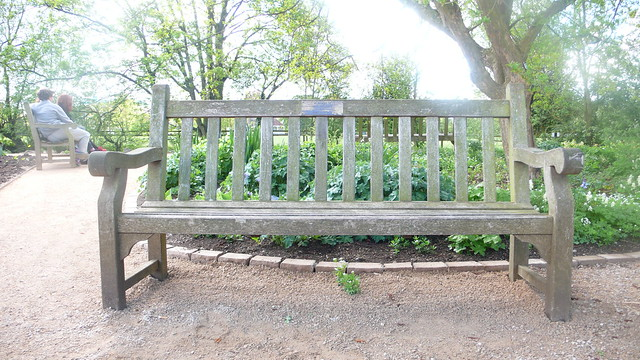 Will & Lyra's bench in the Botanical Gardens in Oxford
