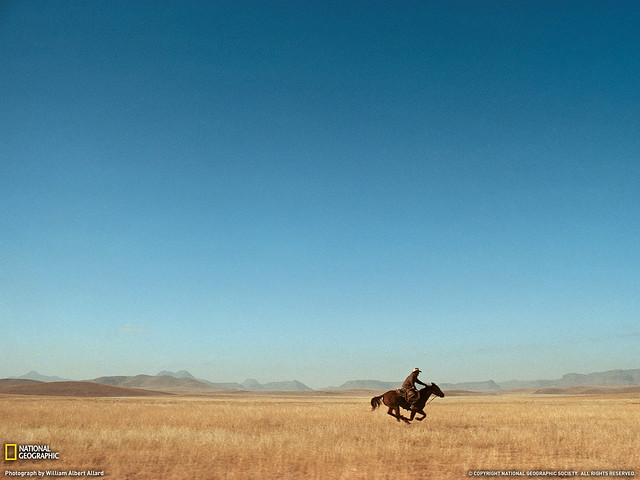 Lone Rider, Under the Big Sky, West Texas cowboy at full gallop, by William Albert Allard 1974