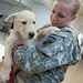 Army Reserve civil affairs soldiers extend helping hands to furry friends [Image 5 of 6]