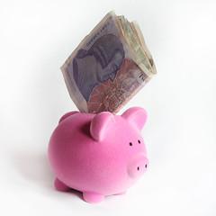 Piggy Bank!