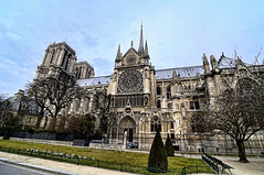 Ratatouille - Notre Dame