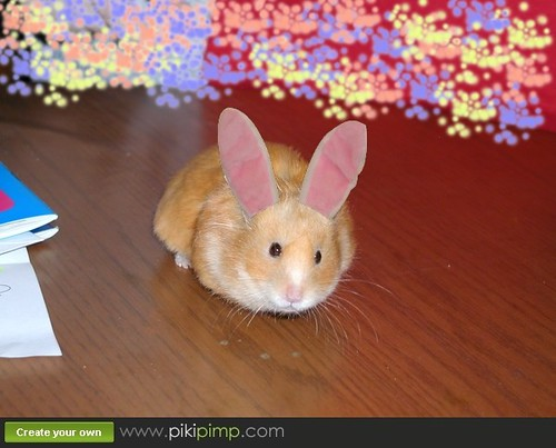The Easter Bunny searches thoroughly for good hiding spaces for eggs.