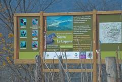 Sierra de la Laguna-1020