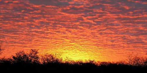 sunrise botswana