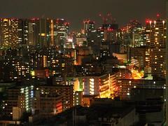 Tokyo, night view like a miniature landscape.  箱庭的東京夜景