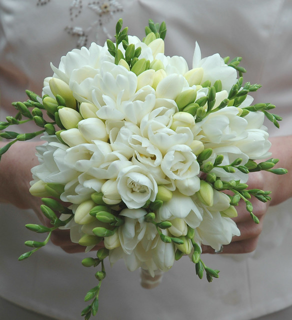 white freesia bouquet flickr photo sharing. Black Bedroom Furniture Sets. Home Design Ideas