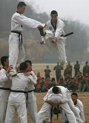 taekkyeon(0.0), contact sport(1.0), sports(1.0), tang soo do(1.0), combat sport(1.0), martial arts(1.0), karate(1.0), japanese martial arts(1.0), shorinji kempo(1.0),